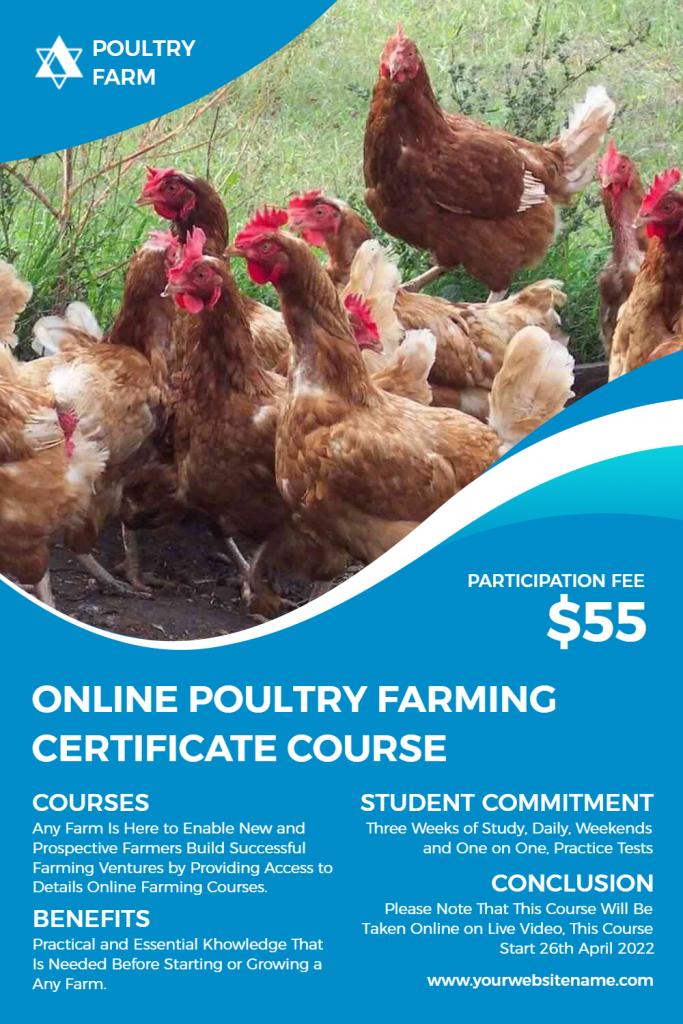 poultry farm flyers