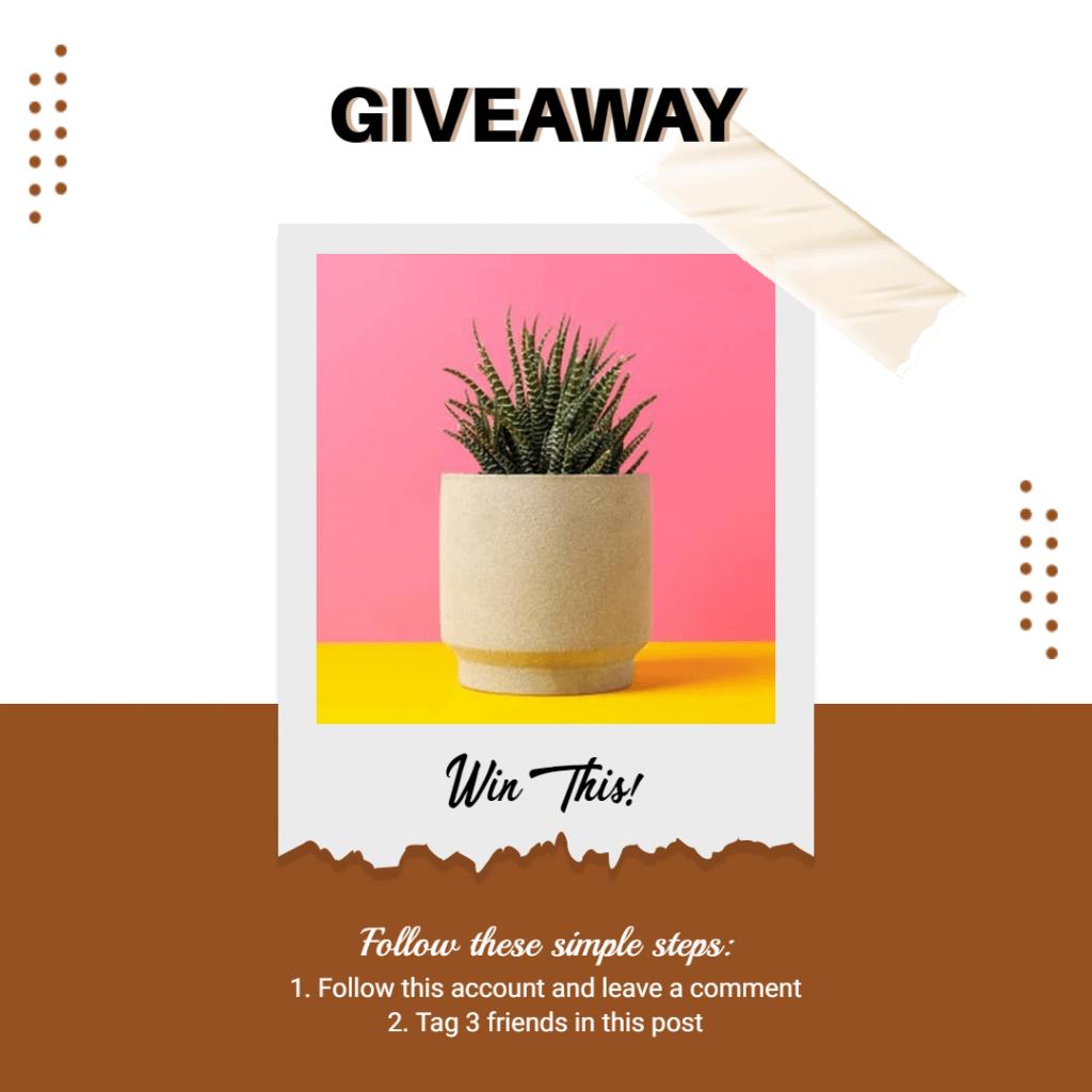 instagram post type: giveaway